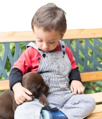 Adorable Baby And His Dog