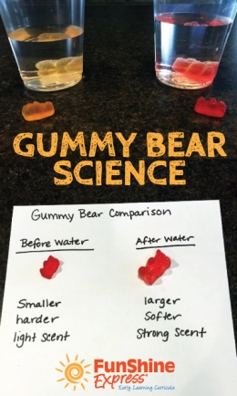 Gummy-Bear-Science