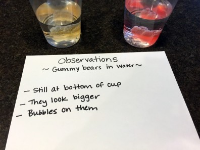 Gummy Bear Science4